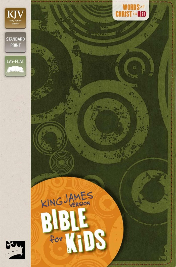 KJV Bible For Kids