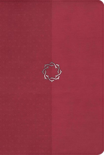 The HCSB Essential Teen Study Bible Rose Leathertouch
