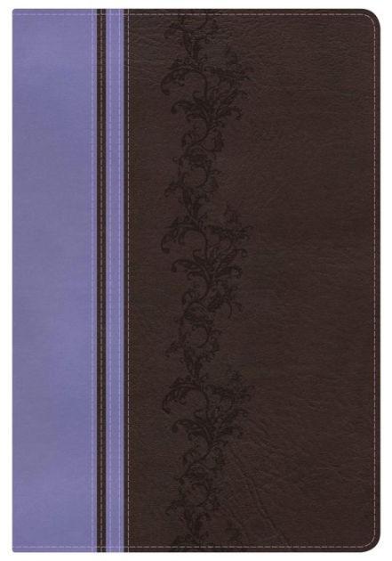KJV Rainbow Study Bible, Brown/Lavender, Indexed