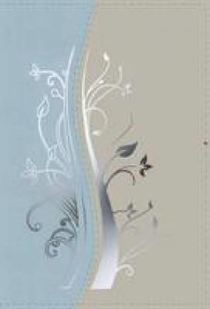 NIV Compact Bible Blue/Silver
