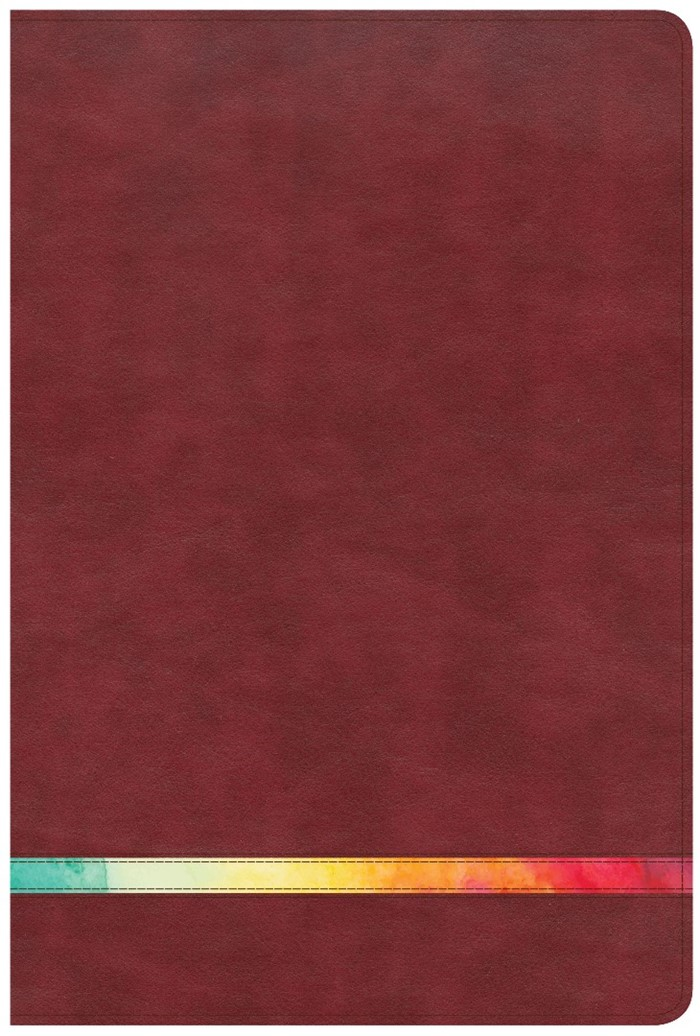 NIV Rainbow Study Bible Maroon Leathertouch