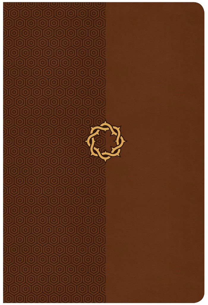 CSB Essential Teen Study Bible, Walnut Leathertouch