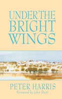 Under the Bright Wings (Paperback)