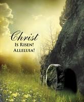 Christ Sunrise Easter Bulletin, Large (Pkg of 50) (Loose-leaf)