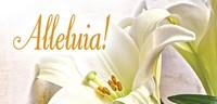 Alleluia! Easter Lilies Offering Envelope (Pkg of 50) (Loose-leaf)