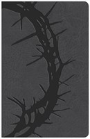 KJV Large Print Personal Size Reference Bible, Charcoal (Imitation Leather)