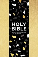 NIV Pocket Soft-tone Bible, Gold