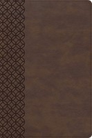 CSB Giant Print Center-Column Reference Bible, Brown Leather (Imitation Leather)