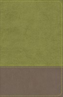 KJV Study Bible for Boys, Olive/Brown