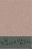 KJV Study Bible for Girls, Pink Pearl/Gray