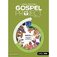 Gospel Project Home Edition: Bible Story DVD, Semester 4 (DVD)