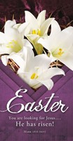 You are Looking for Jesus Easter Offering Envelope (100) (General Merchandise)