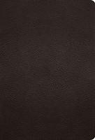 ESV Large Print Compact Bible (Buffalo Leather, Deep Brown) (Imitation Leather)