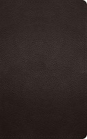ESV Large Print Personal Size Bible (Buffalo Leather, Deep B (Imitation Leather)
