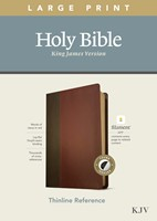 KJV Large Print Thinline Reference Bible, Filament Enabled E