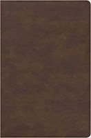 CSB Seven Arrows Bible, Brown LeatherTouch (Imitation Leather)