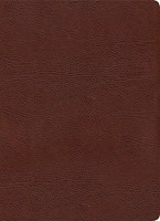 KJV Study Bible, Full-Color, Brown Bonded Leather, Indexed (Bonded Leather)