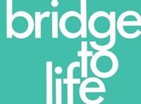Bridge to Life (pack of 25) (Paperback)