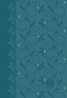 Passion Translation NT 2020 Edition, Teal, Compact (Imitation Leather)