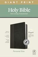NLT Personal Size Giant Print Bible, Filament Edition, Black (Imitation Leather)