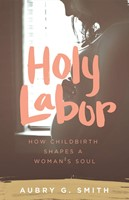 Holy Labor (Paperback)