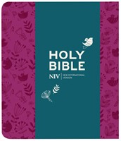 NIV Journalling Bible with Clasp, Plum