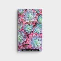 2021 28-Month Planner: Succulents (Paperback)