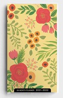 2021 28-Month Planner: Whimsy Floral (Paperback)