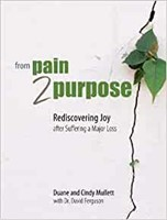 From Pain 2 Purpose (Paperback)