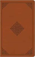 ESV Thinline Bible (TruTone, Terracotta, Ornament Design) (Imitation Leather)