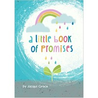 Little Book of Promises