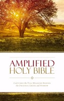 Amplified Holy Bible (Hard Cover)