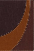 The Case For Christ Study Bible (Imitation Leather)