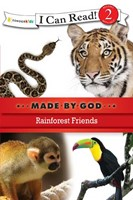 Rainforest Friends (Paperback)