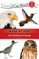 Our Feathered Friends (Paperback)