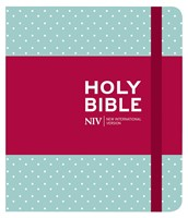 NIV Journaling Mint Polka Dot Cloth Bible (Hard Cover)
