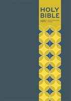NIV Pocket Blue Soft-Tone Bible With Clasp (Flexiback)