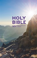 NIV Thinline Value Hardback Bible (Hard Cover)
