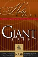 NASB Giant Print Handy-Size Reference Bible, Black (Leather Binding)