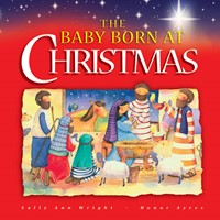 The Baby Born At Christmas (Hard Cover)