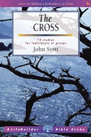 Lifebuilder: The Cross