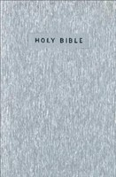 NIV Gift and Award Bible Silver (Paperback)