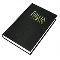 Portuguese Bible Almeida Revised Large Print (Vinyl)
