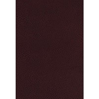 KJV Study Bible, The, Indexed, Full-Color Ed. (Bonded Leather)
