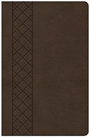 CSB Ultrathin Reference Bible, Value Edition, Brown