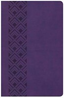 CSB Ultrathin Reference Bible, Value Edition, Purple Leather