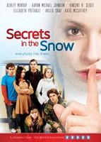 Secrets In The Snow (DVD)