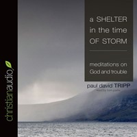 Shelter In The Time Of Storm Audio Book, A