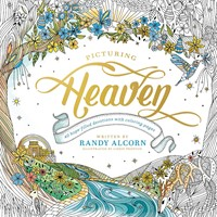 Picturing Heaven (Paperback)