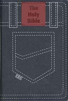 CEV Youth Bible Global Edition Denim (Cloth-Bound)